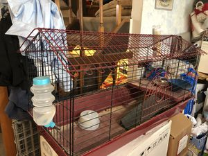 Large animal cage! for Sale in Springfield, VA