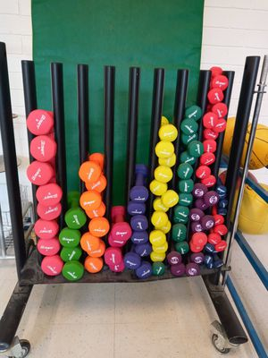 Ultra Fit weights (buy in pairs or multiple, MAKE DECENT OFFER) for Sale in Hillsborough, NC