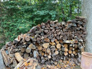Firewood for sale for Sale in Oceanport, NJ