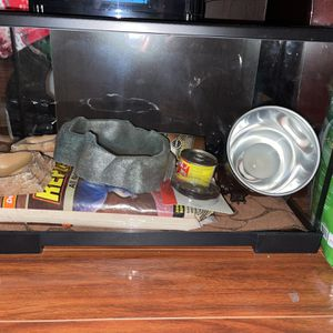 Small Tank For Reptile for Sale in La Mirada, CA