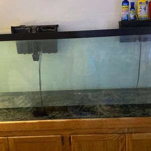 150g Gallon Fish Tank And Stand ONLY for Sale in Hialeah, FL