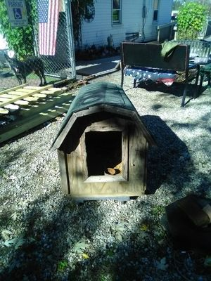 Medium dog house for Sale in Circleville, OH