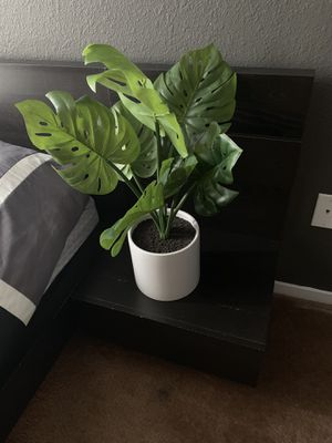 Selling this fake plant! Brand new! Still have the price tag on! Can't return it cause I lost my receipt for Sale in Sacramento, CA