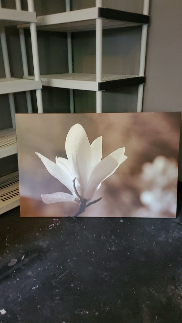 Canvas pic flower