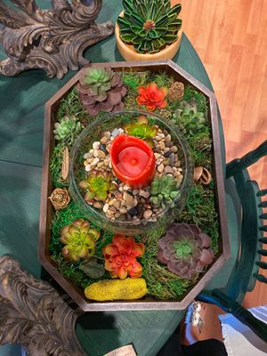 The big wooden succulent decor tray . for Sale in Scottsdale, AZ