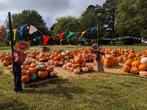 PUMPKINS For Sale- St Andrew Lutheran Church for Sale in Portsmouth, VA