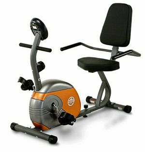 Home/Gym Recumbent Exercise Bike for Sale in Hidden Hills, CA