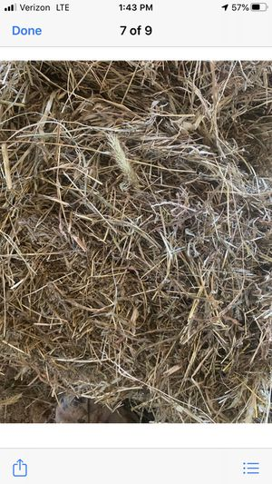 Hay Good Kentucky mixed Grass , last cut for Sale in Yorkville, IL