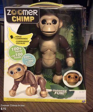 Interactive Chimp for Sale in Detroit, MI