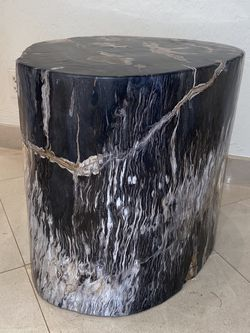 PETRIFIED WOOD SIDE PIECE DECORATION for Sale in Miami,  FL
