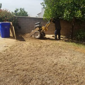 Stump removal for Sale in Fontana, CA