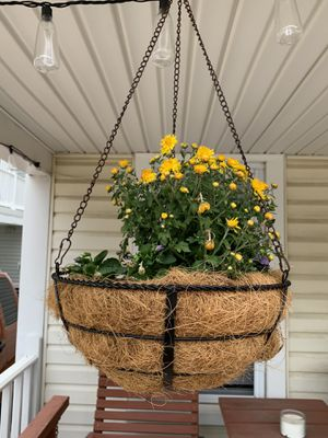 Hanging Baskets and Railing Planters for Sale in Wildwood, NJ