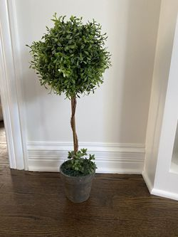 Topiary - 23 inches tall for Sale in Westmont,  IL
