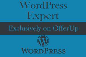 Create Mobile Responsive Website On WordPress for Sale in Miami, FL