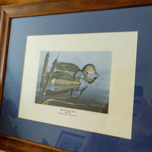 Ducks Unlimited Pictures Framed And Matted for Sale in Port Richey, FL
