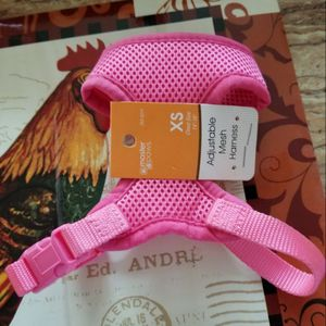 Dog harness for Sale in Chicago, IL