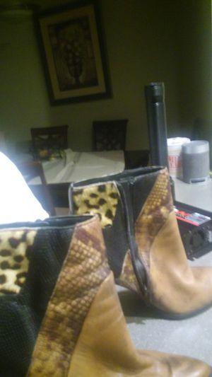 Snake Skin Leather ALDO Boot size 8 for Sale in Issaquah, WA