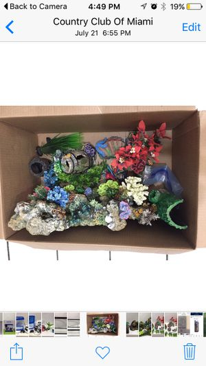Assorted Fish Plants and Ornaments for Sale in Hialeah, FL