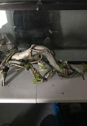 Fish tank decoration for Sale in Philadelphia, PA