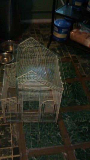 Bird cage for Sale in Holyoke, MA