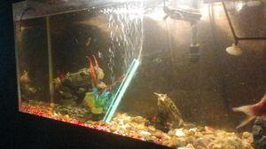 50 gallon fish tank for Sale in Sun City, AZ