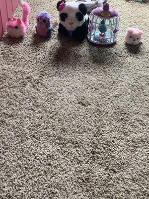 Interactive Stuffed Animals for Sale in Gilbert, AZ