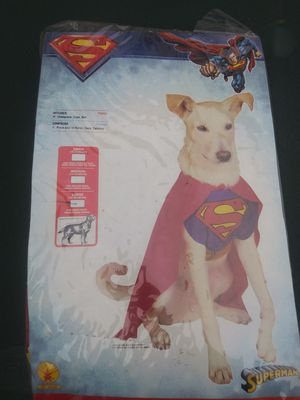 Dog Halloween costume for Sale in Justice, IL