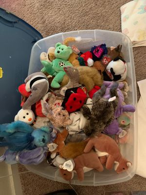 Beanie Babies for Sale in Tacoma, WA