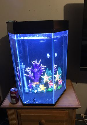 30 gal fish tank with lid ,filter, lights , heater and decoration for Sale in Nashville, TN