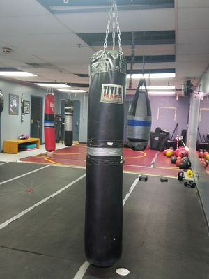 Long 100 lb Title Punching Bag for Sale in Sterling Heights, MI