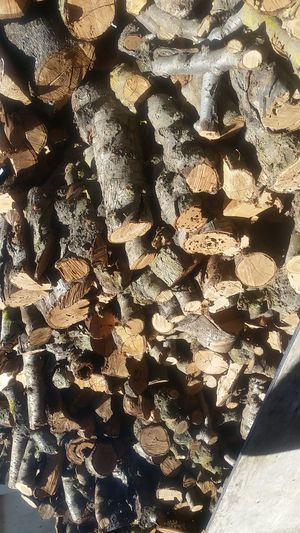 firewood for sale for Sale in Lodi, CA