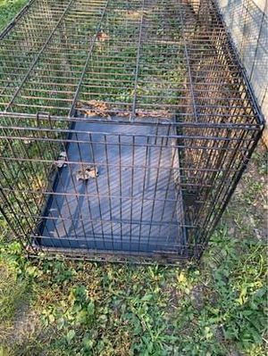 Large metal cage for Sale in Myerstown, PA