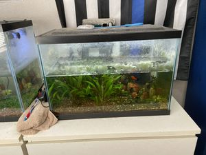 Fish tanks for Sale in Costa Mesa, CA