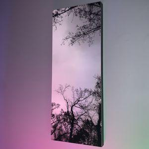 Monochrome Wall Art for Sale in Seymour, CT