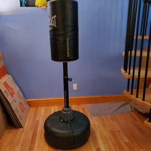 Everlast punching bag for Sale in Lynn, MA