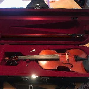 West Coast Strings Rosalia 4/4 Violin with Case And Bow for Sale in Palm Harbor, FL