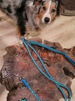 Double Dog Leash for Sale in North Fork,  CA