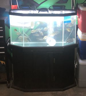 70 gallon aquarium for Sale in Houston, TX