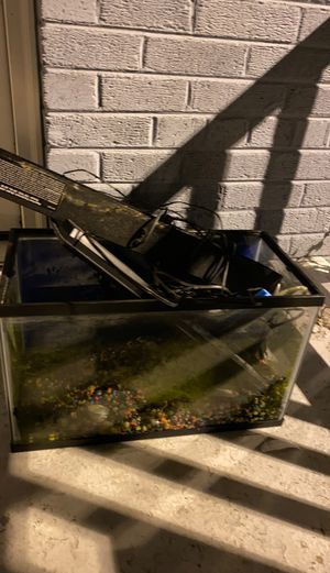 Fish tank with filter and more supply for Sale in Washington, DC