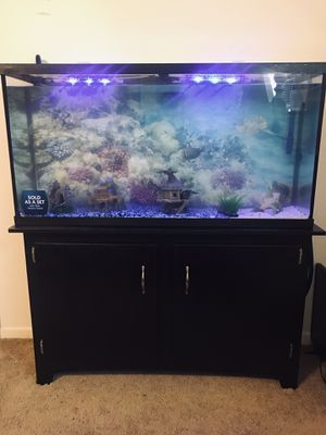60 gallon fish aquarium with stand and all the tank accessories for Sale in Baker, LA