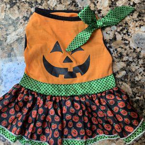 Pumpkin Dog Dress for Sale in Bakersfield, CA