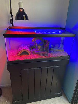 terrarium reptile / ball phyton for Sale in Irvine, CA