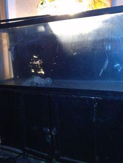 55 Gallon Fish Tank for Sale in Lebanon,  IN