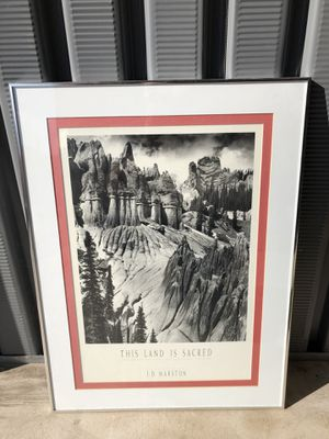 Beautiful framed photo for Sale in Denver, CO