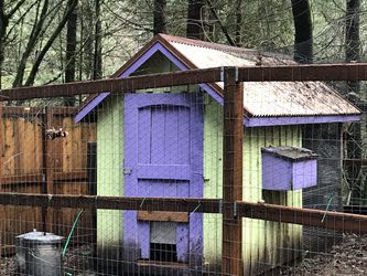 Hen House And Feed Troughs for Sale in Snoqualmie Pass,  WA