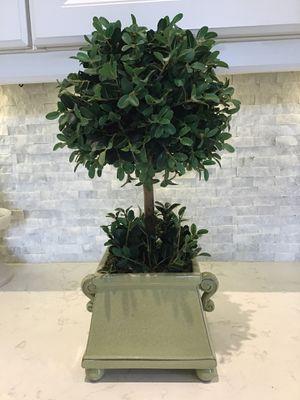 Topiary for Sale in Pembroke Pines, FL