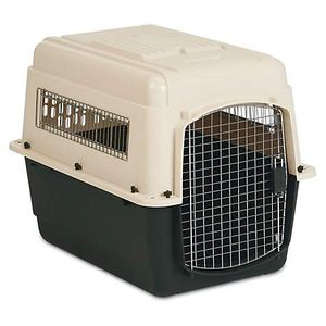 Permate Dog Kennel Medium for Sale in Bakersfield, CA