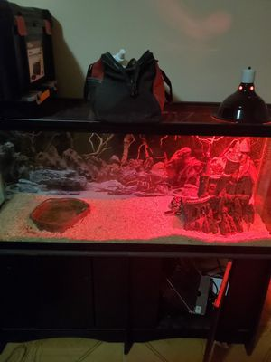Ball python and tank for Sale in Baytown, TX