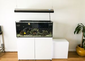 Red Sea reefer 350 saltwater aquarium package for Sale in Rockville, MD