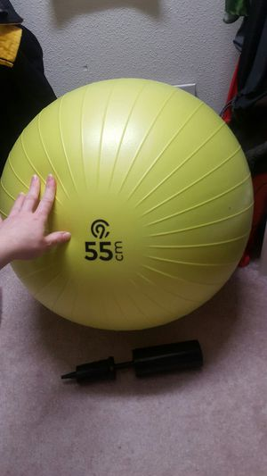 Exercise Ball with Pump for Sale in Anchorage, AK